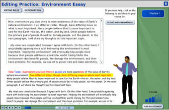 Screenshot of writing program: Essay Response